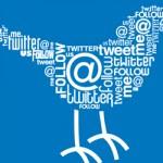 Twitter bird twortle -- slide image