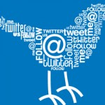 Twitter Word Cloud Bird